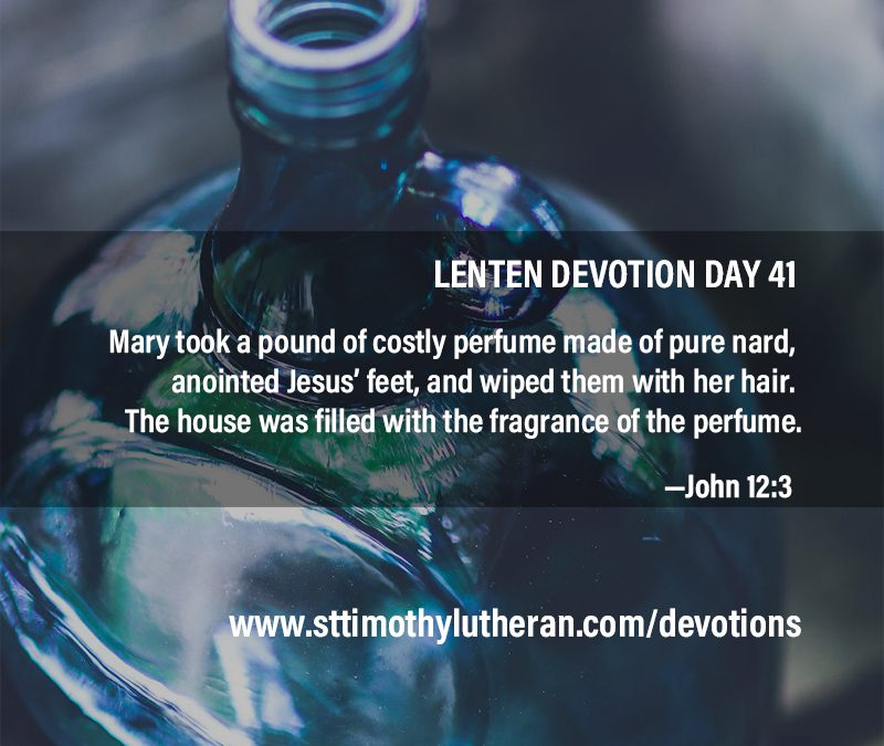 devotion day 41
