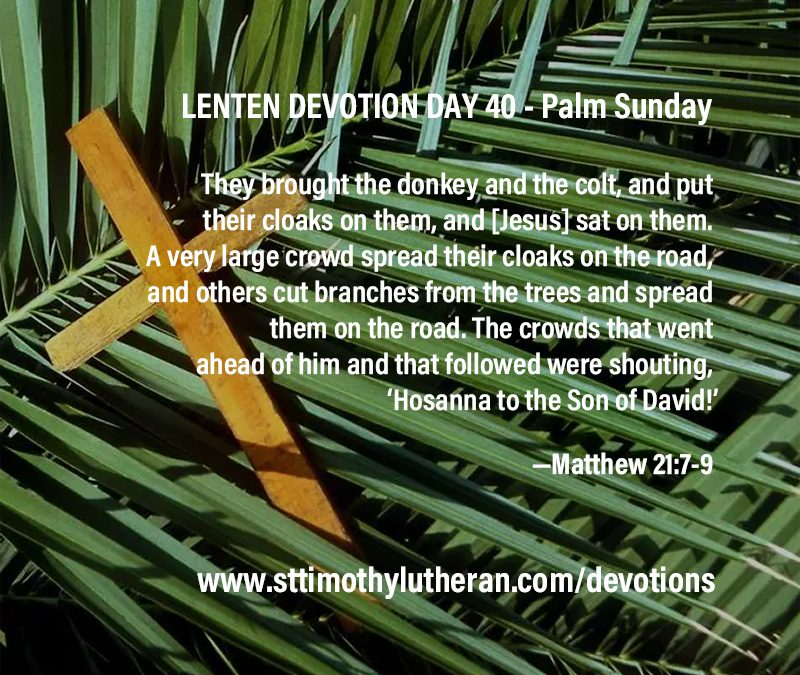 Lenten Devotion – Day 40 – Palm Sunday – Do not fear